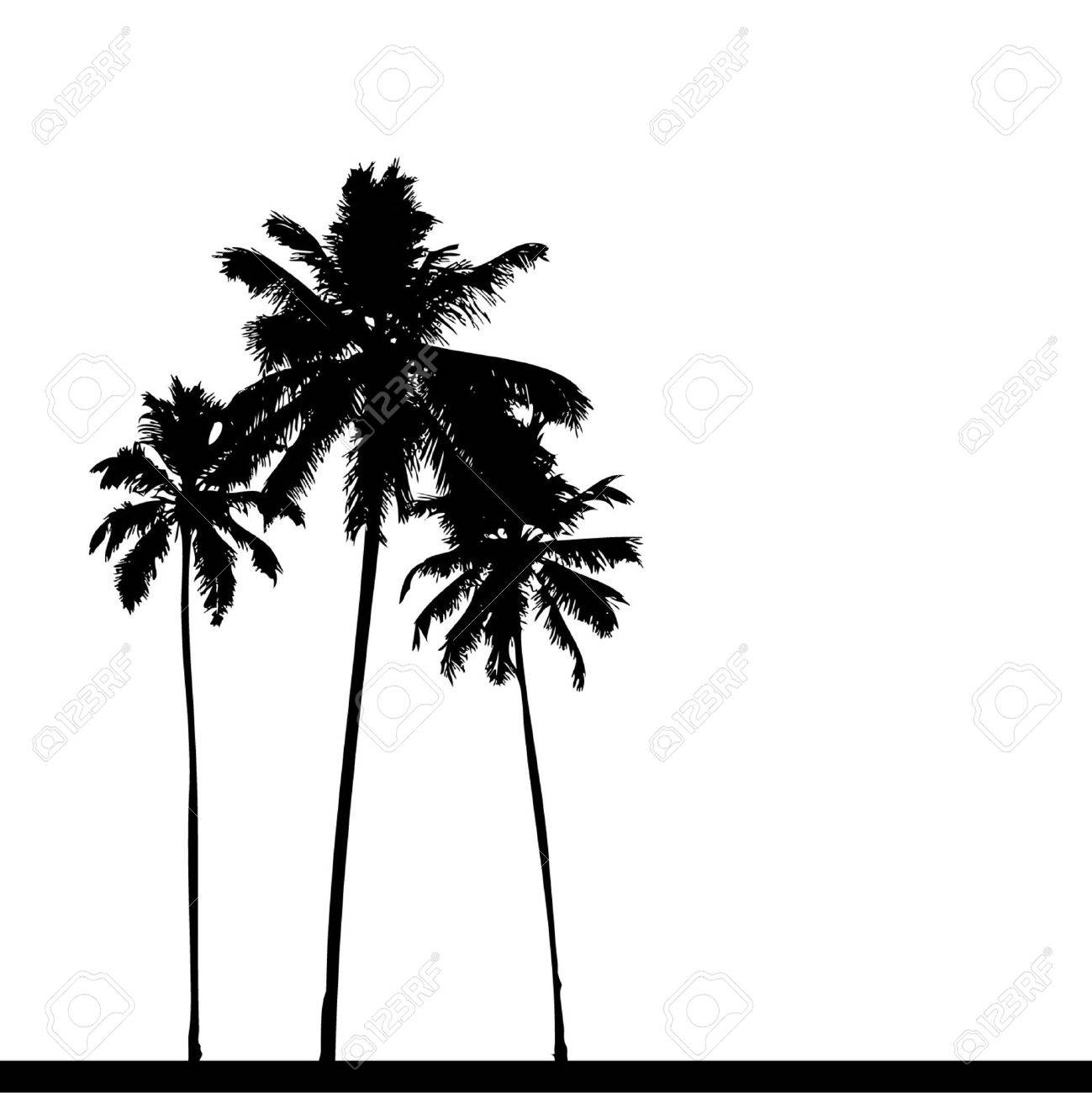 Palm Trees Silhouette Palm Tree Silhouette Black