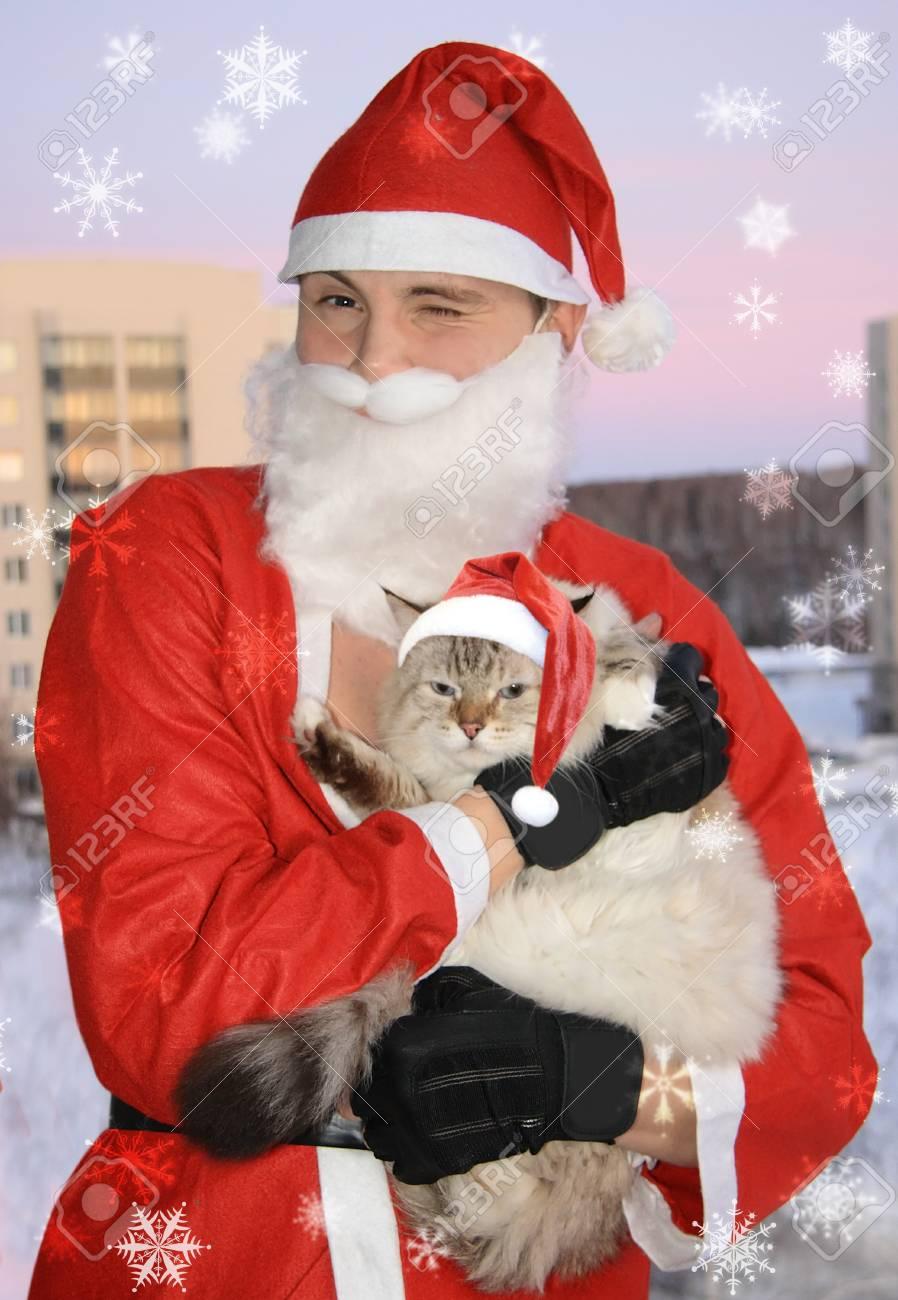 Santa with cat, christmas Stock Photo - 4000196