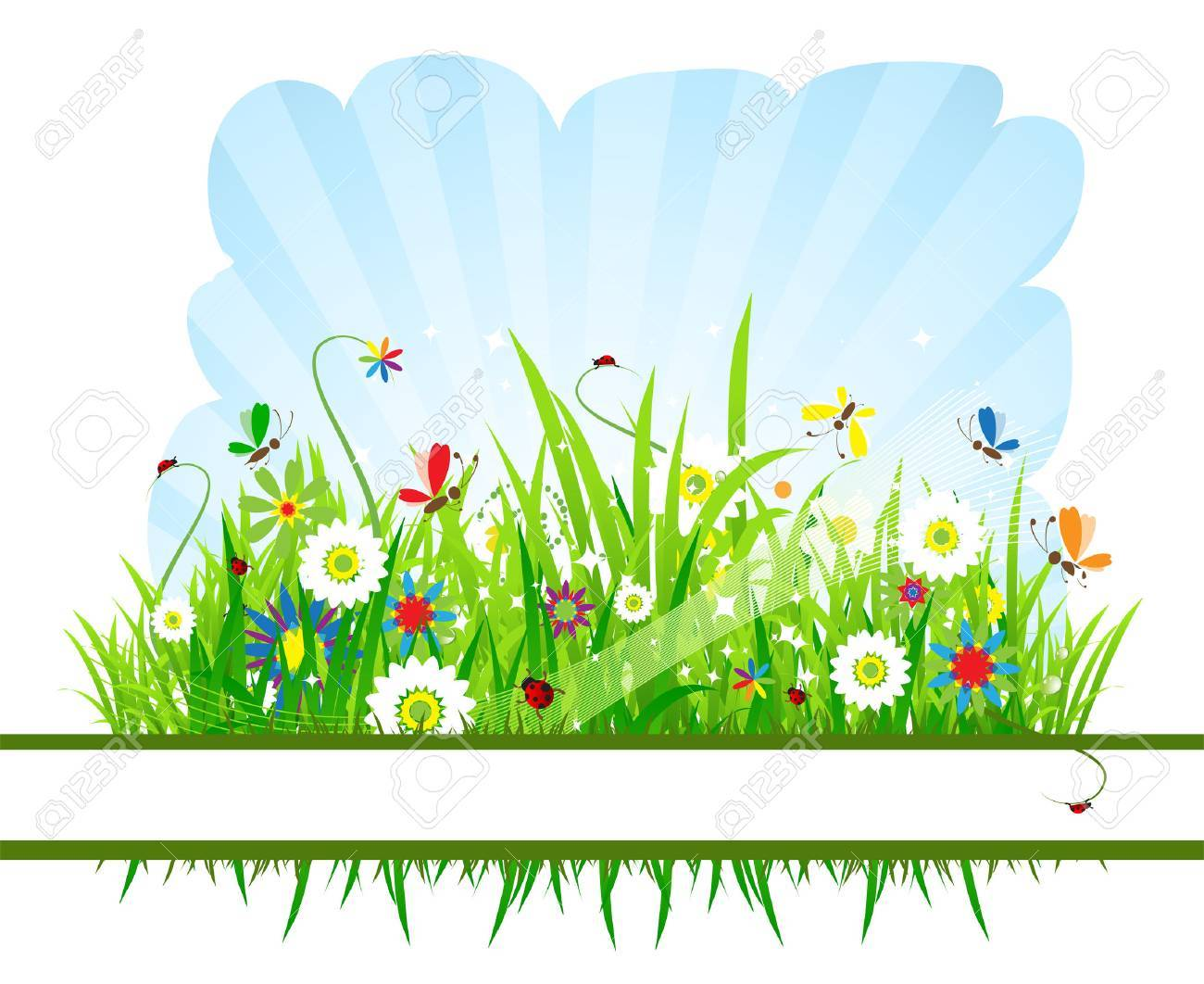 Summer meadow beautiful Stock Vector - 5186791