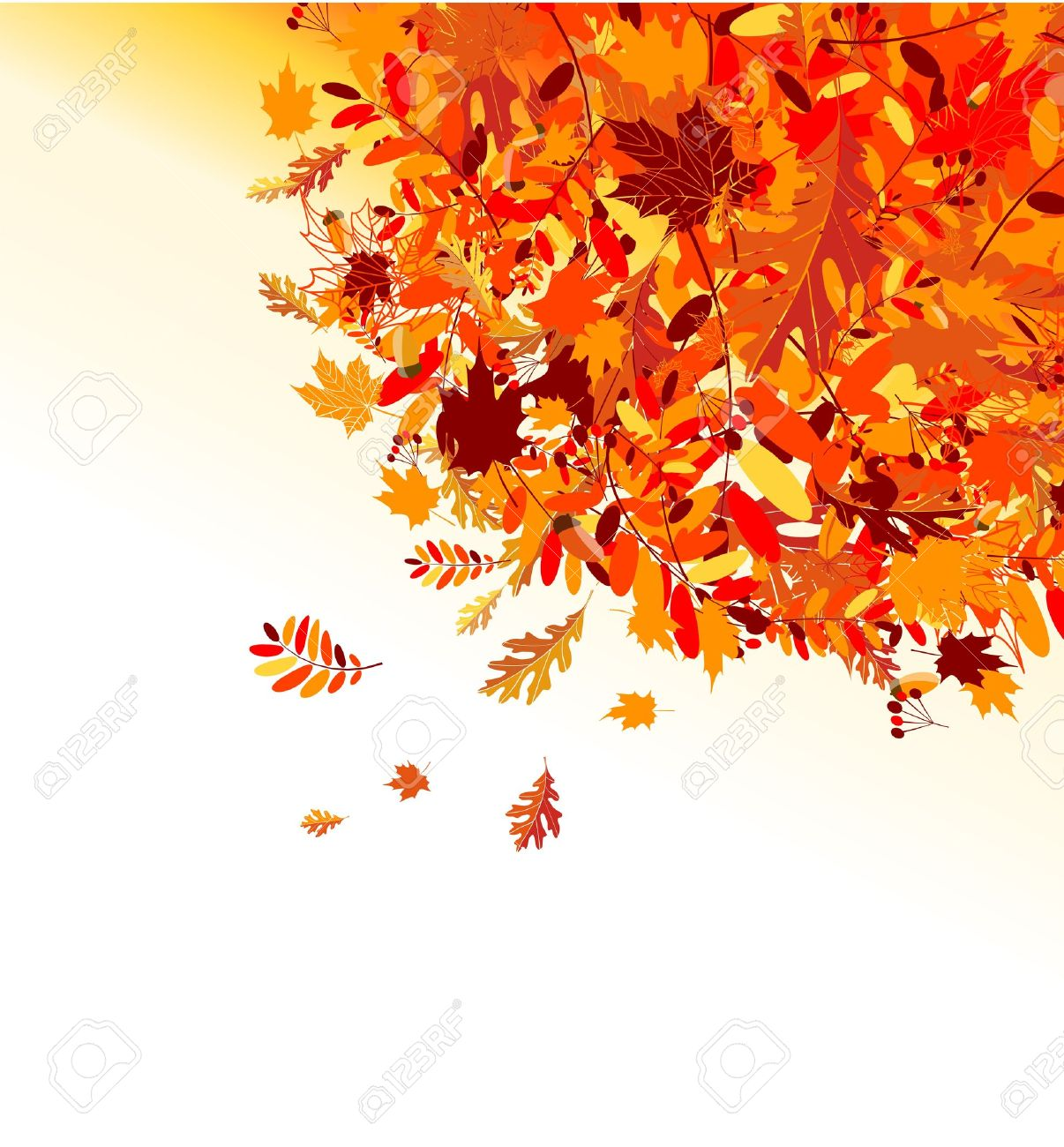 Autumn leaves background for your design Stock Vector - 7770182