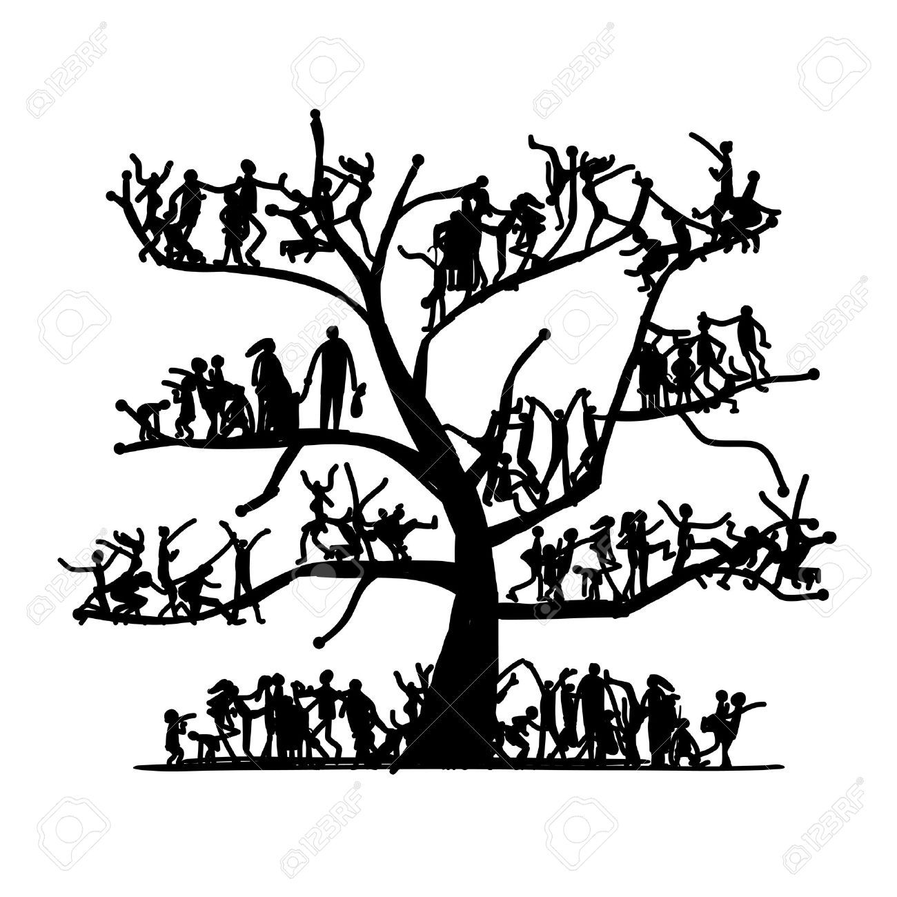 family tree images u0026 stock pictures royalty free family tree