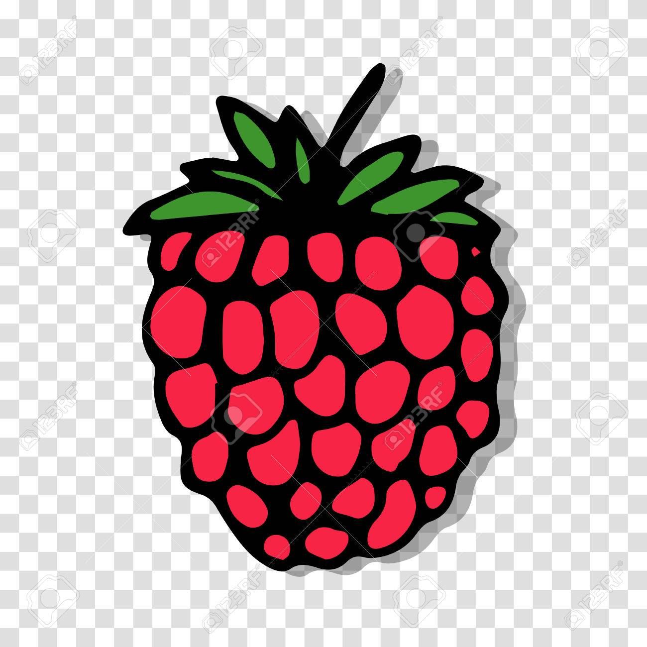 pineapple transparent background. raspberry sketch on transparent background for your design stock vector - 40327059 pineapple l