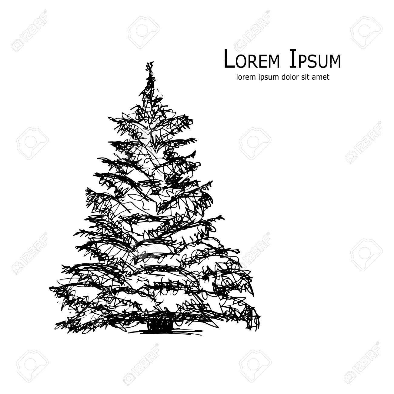 Pine tree, art sketch for your design. Vector illustration - 61708607