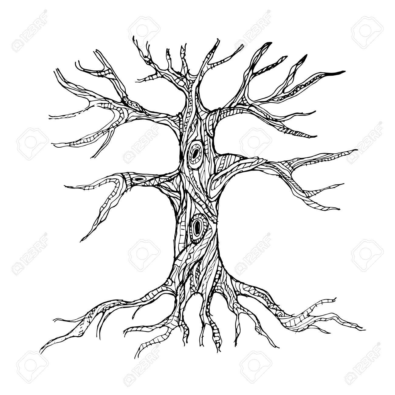 Image result for bare tree with roots