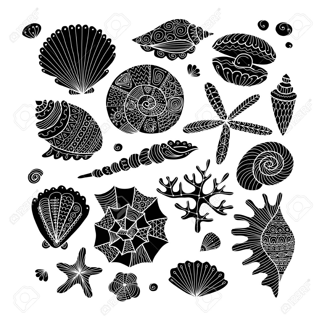 Marine collection, ornate seashells for your design - 99728526