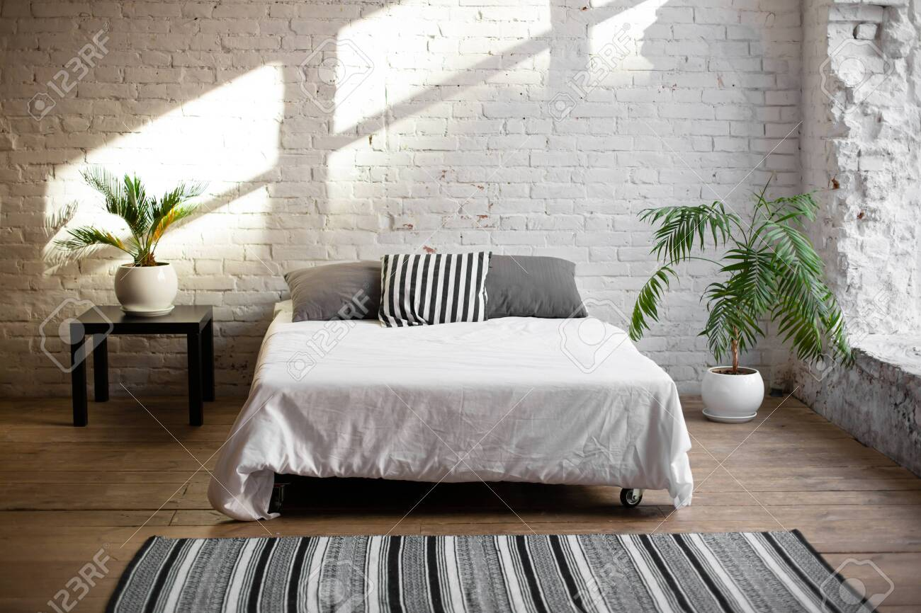 Simple modern bedroom interior with living flower near the bed. - 147845209