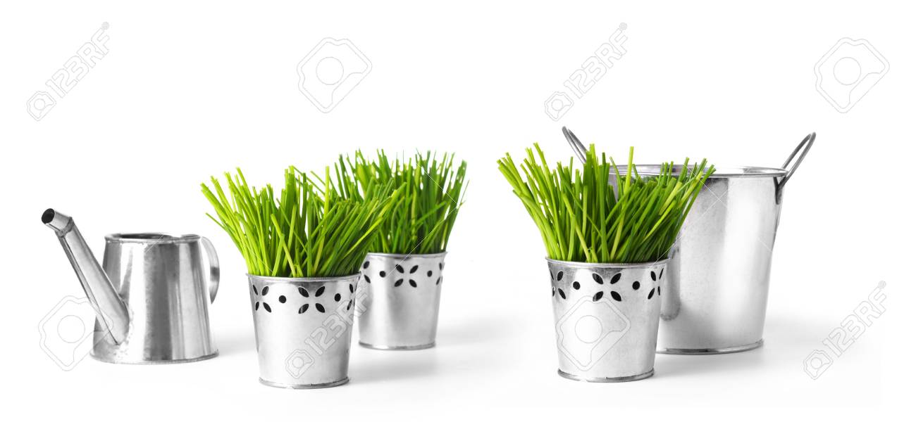 Watering can with grass and garden tools on white Stock Photo - 4339231