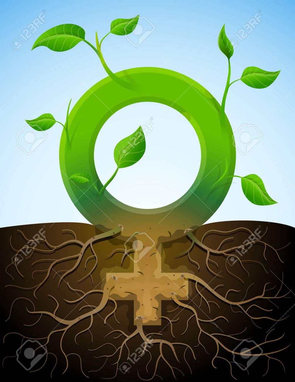 Wachsende Weibliche Symbol ähnliche Pflanze Mit Blättern Und Wurzeln ...