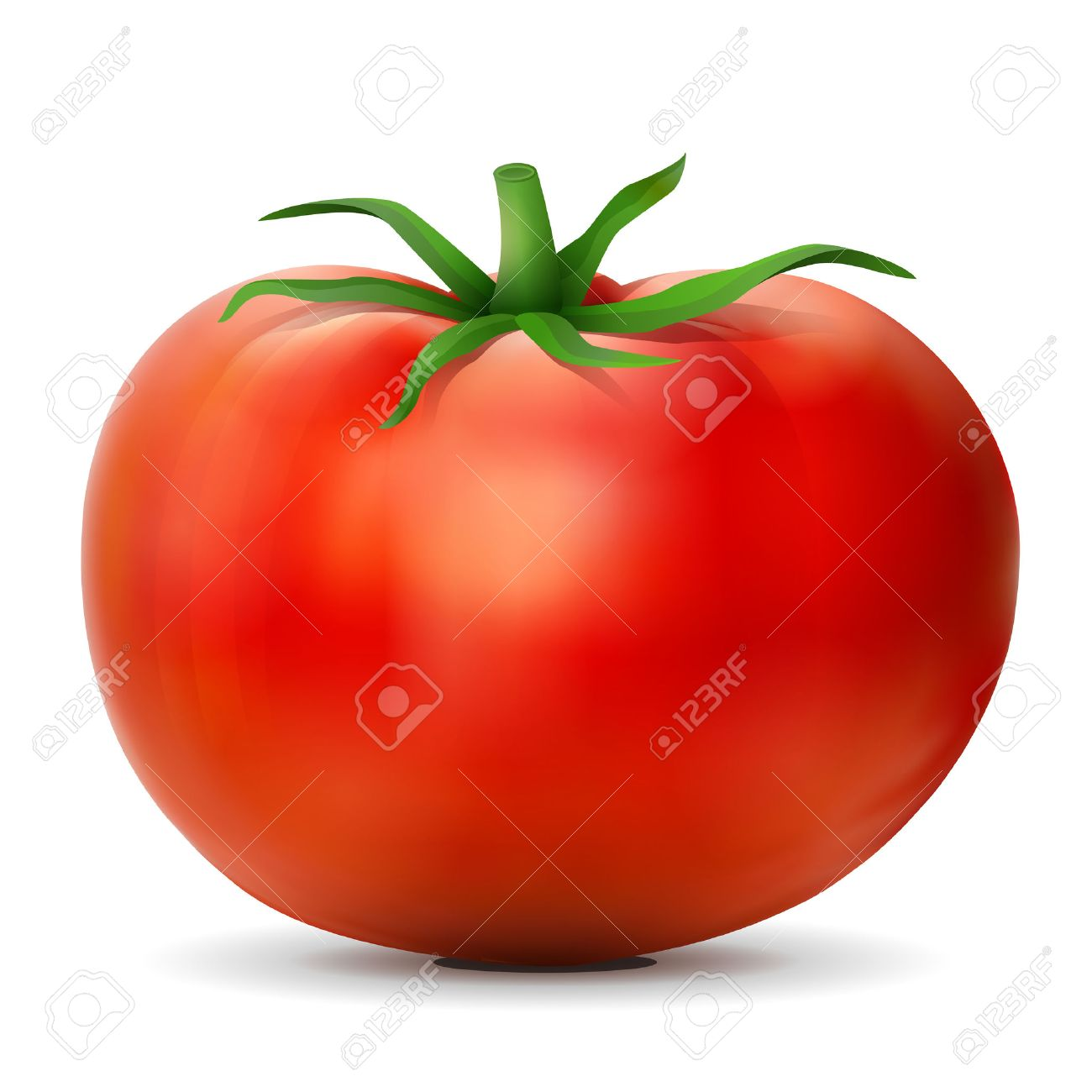 53,167 Tomato Stock Vector Illustration And Royalty Free Tomato ...