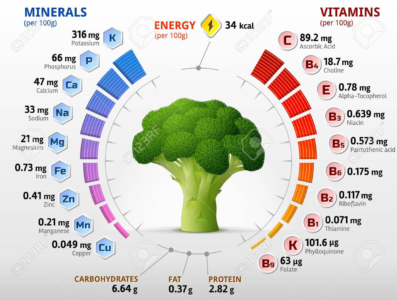 Image result for broccoli is full of vitamins