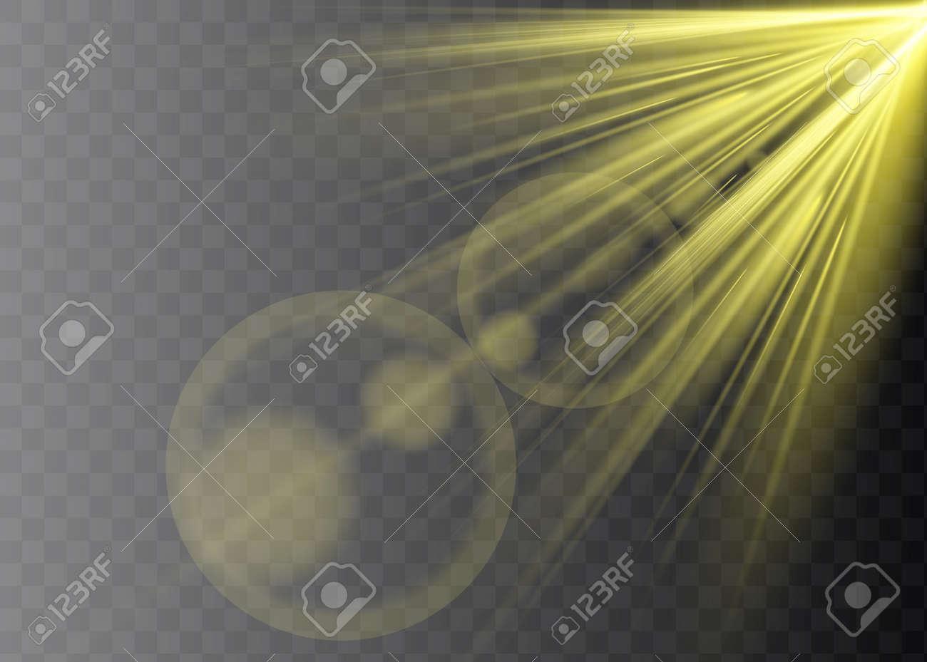 Vector transparent sunlight special lens flare light effect - 169712026