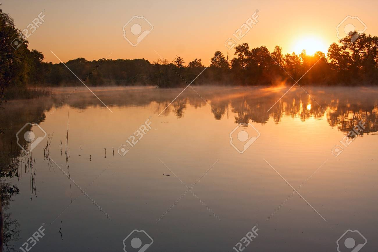 misty sunrise - 28077131