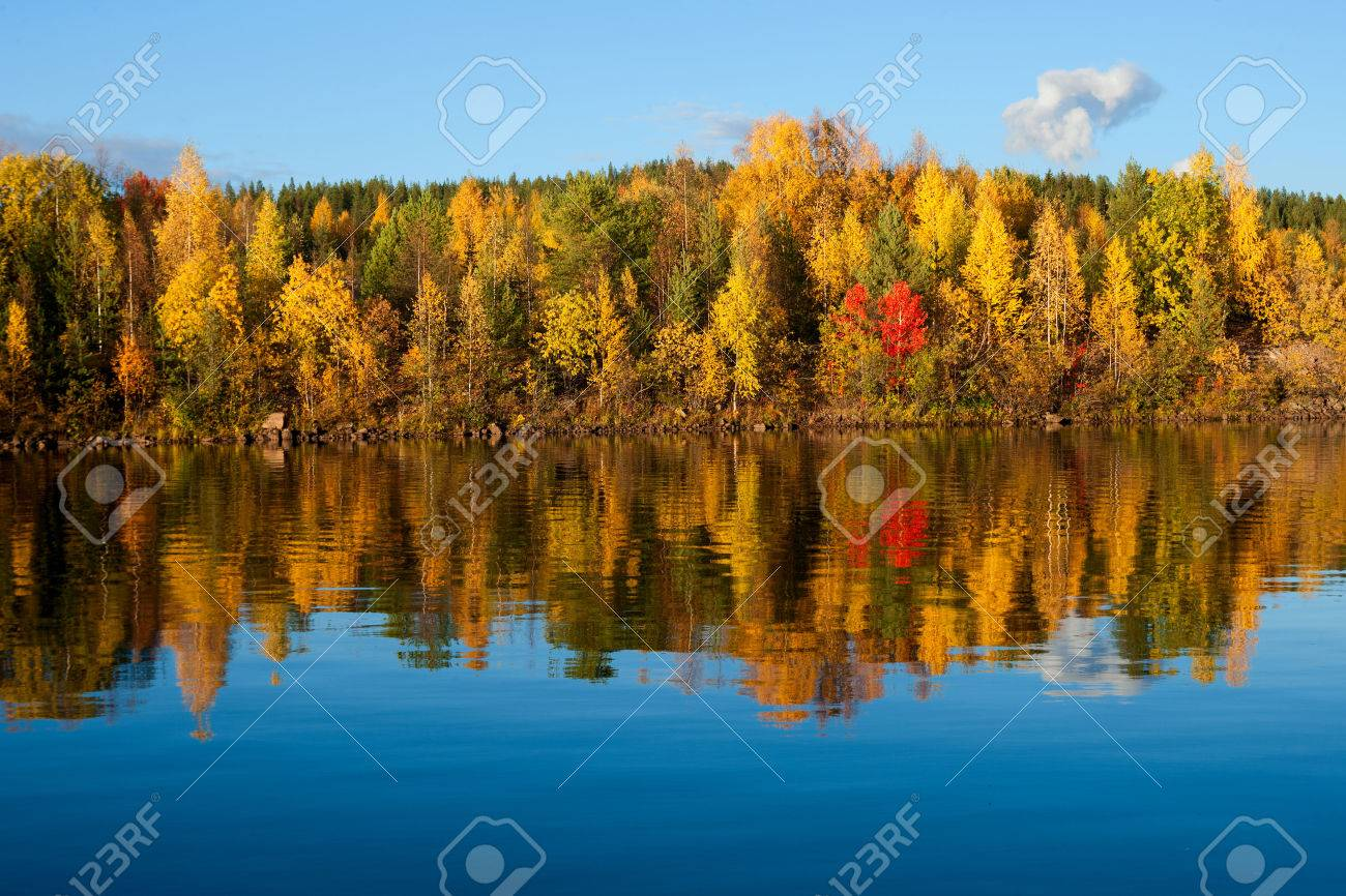 indian summer in finland - 34052193