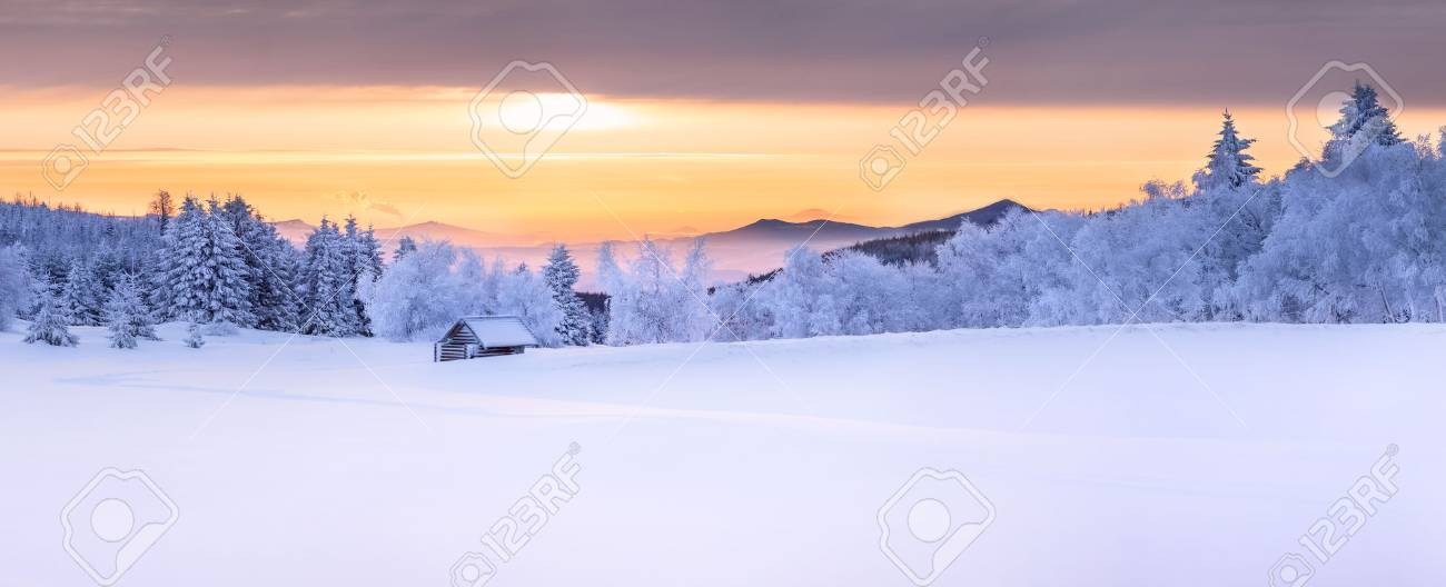 Panorama of an idyllic white winter landscape with a little wooden hut in background - 71780344