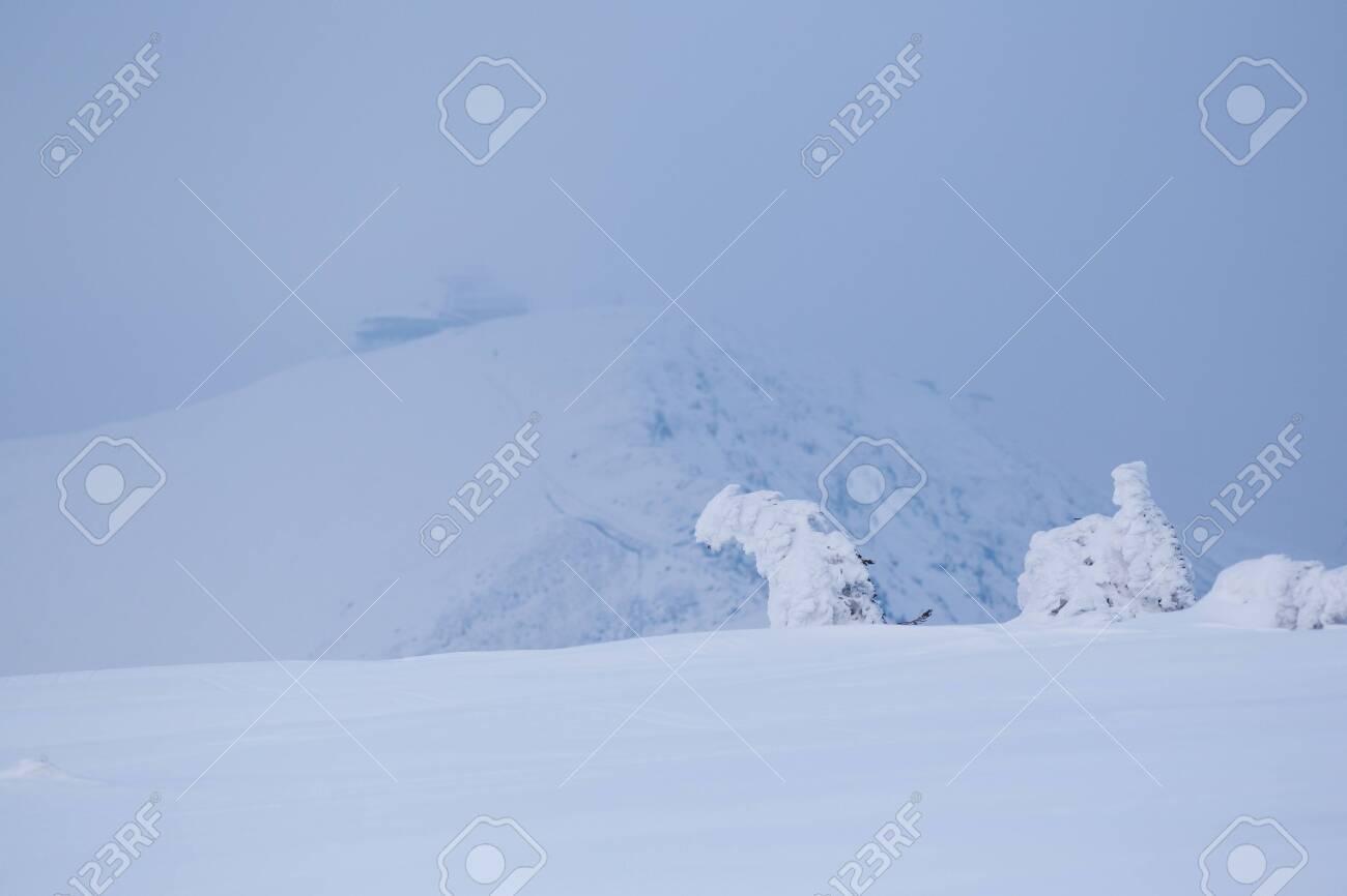 Winter landscape in Krkonose (Poland, Czech Republic) - 133091857
