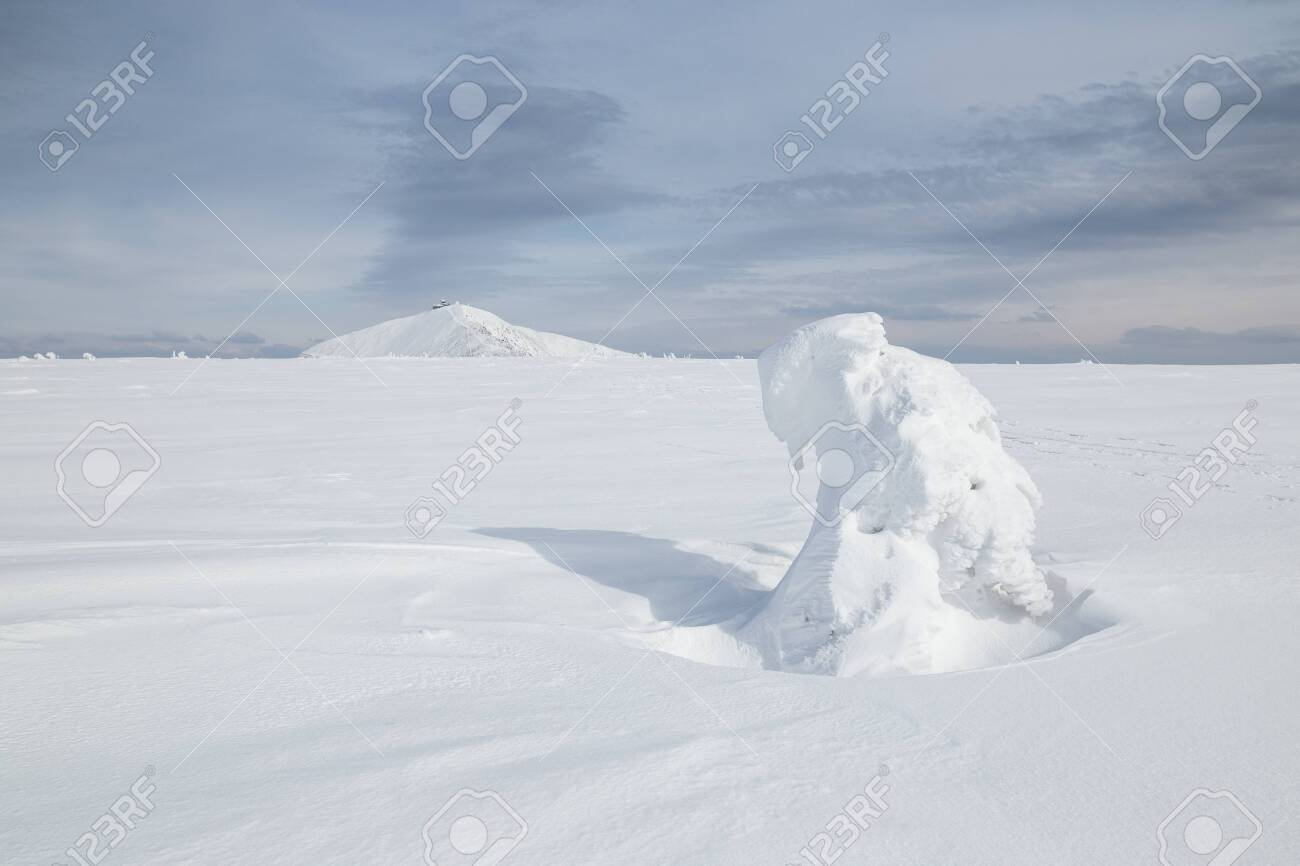 Peak of the Snezka mountain in winter (Krkonose) - 133182014