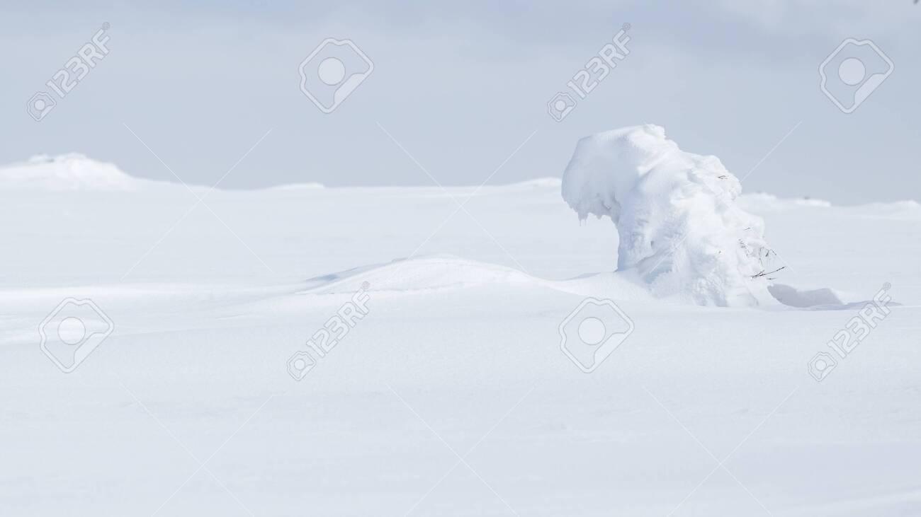 Winter landscape in Krkonose (Poland, Czech Republic) - 133182017