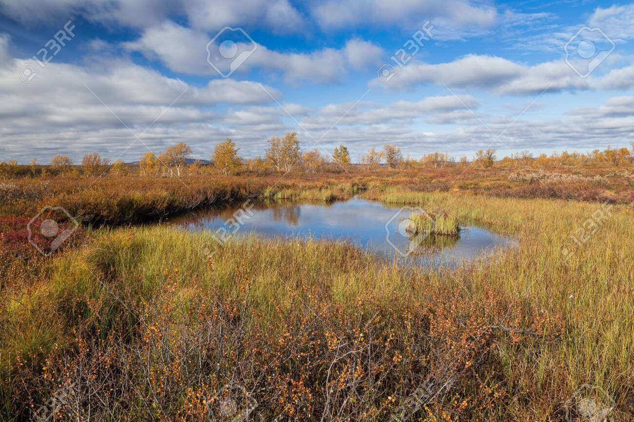 Autumnal fjell landscape in northern Finland - 133182170