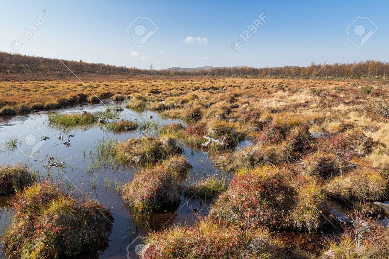 River landscape in Finland in autumn - 133036446