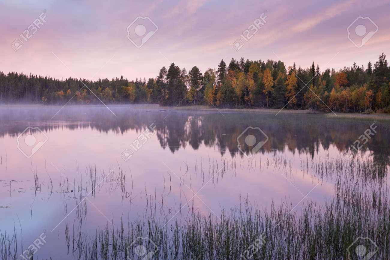Autumnal lake scenery in Sweden during sunrise - 131598037