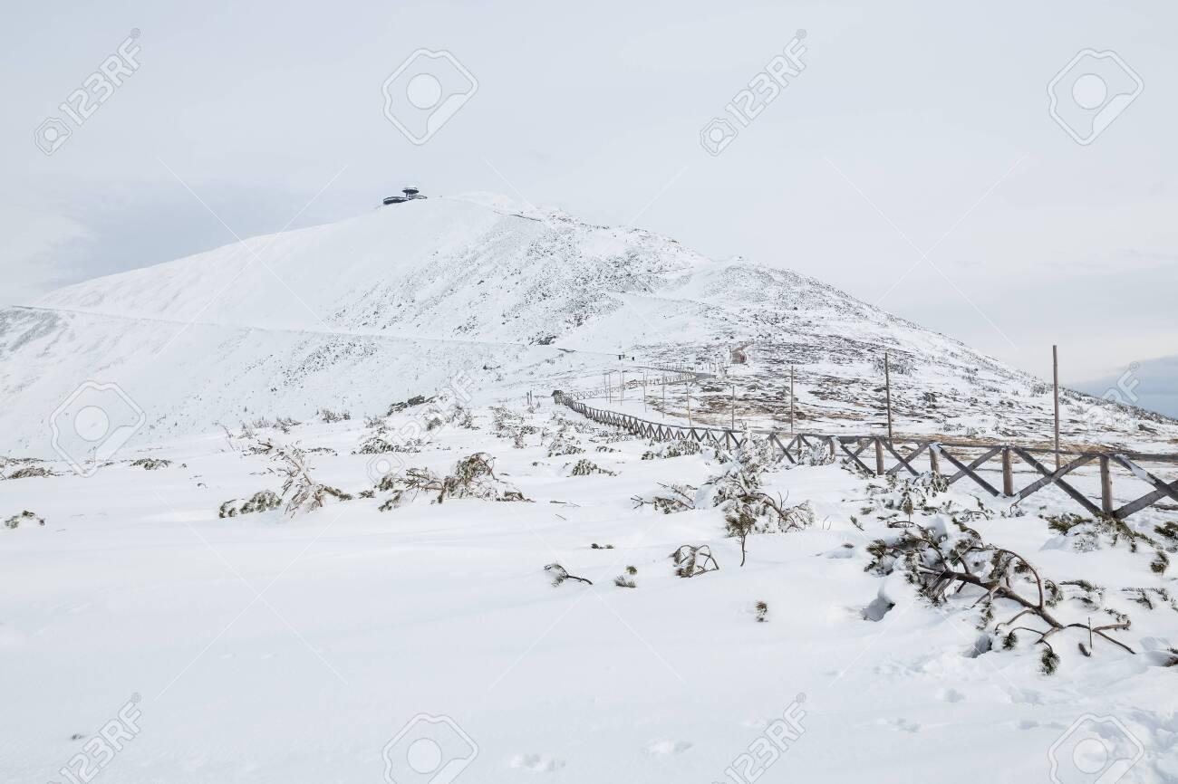 Peak of the Snezka mountain in winter (Krkonose) - 133036471