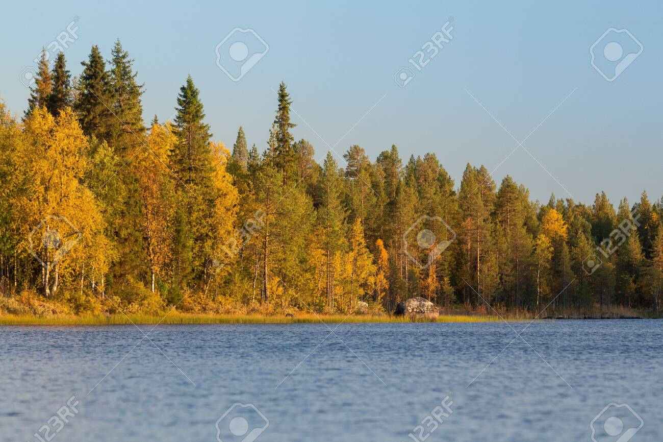 Autumnal lake scenery in Sweden during sunset - 131597630