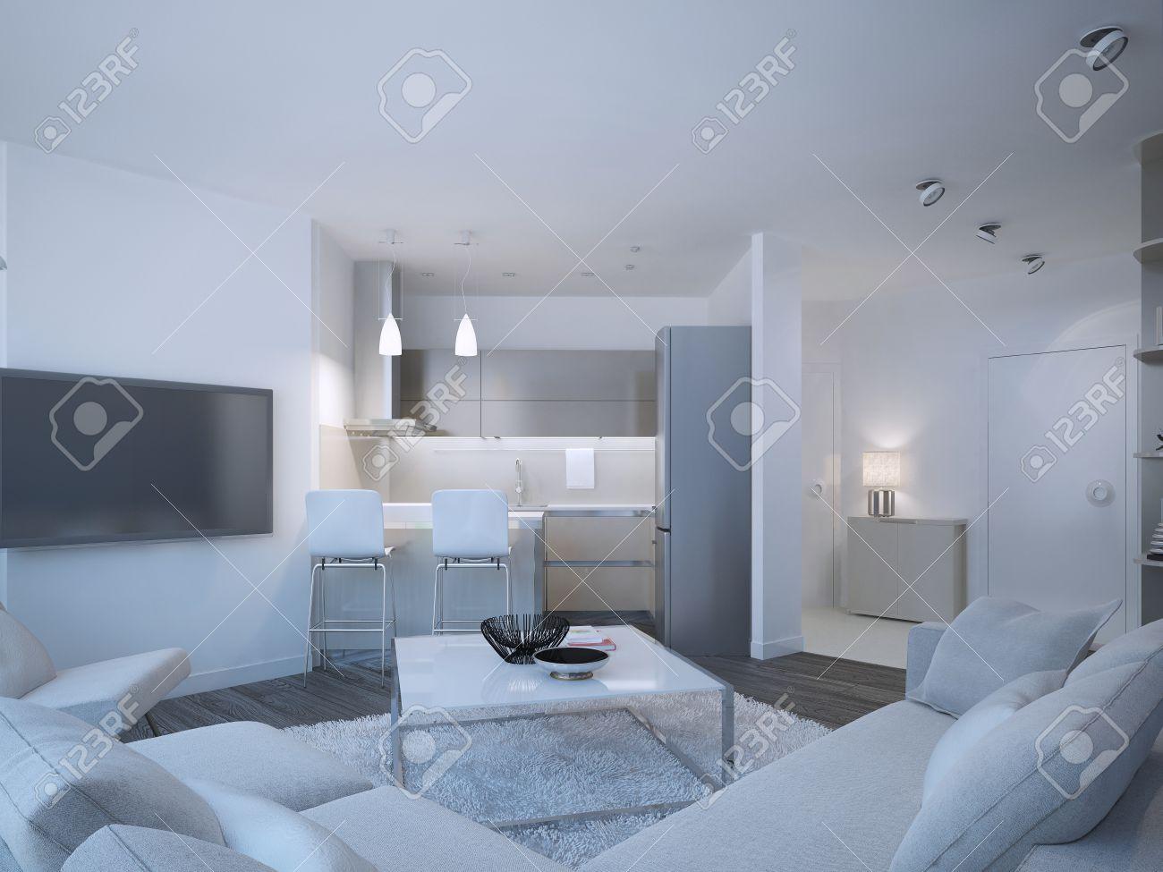 Scandinavian Wohnung Studio Mit Kleinen Zeitgenössischen Küche ...