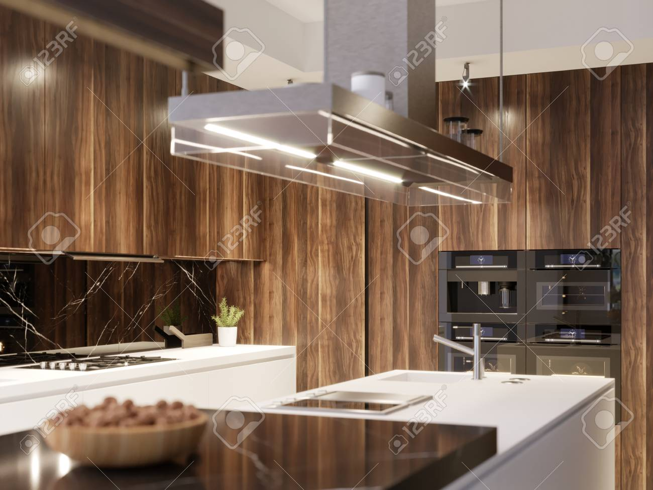 Kitchen Design Hood And Built In Kitchen Appliances In A Modern
