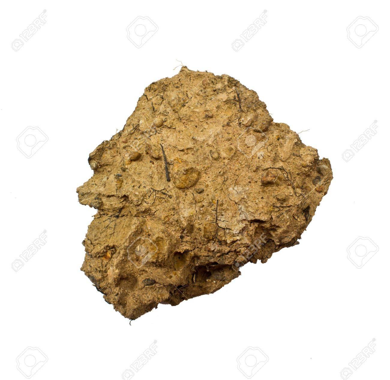 「土塊」の画像検索結果