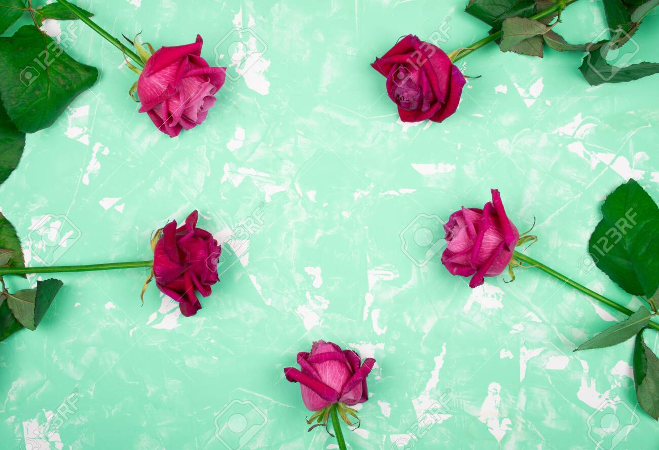Beautiful Pink And Red Roses Forming A Circle On A Marble Background Of Neo Mint Color With Copy Space For Your Text Top View Stock Photo Picture And Royalty Free Image Image