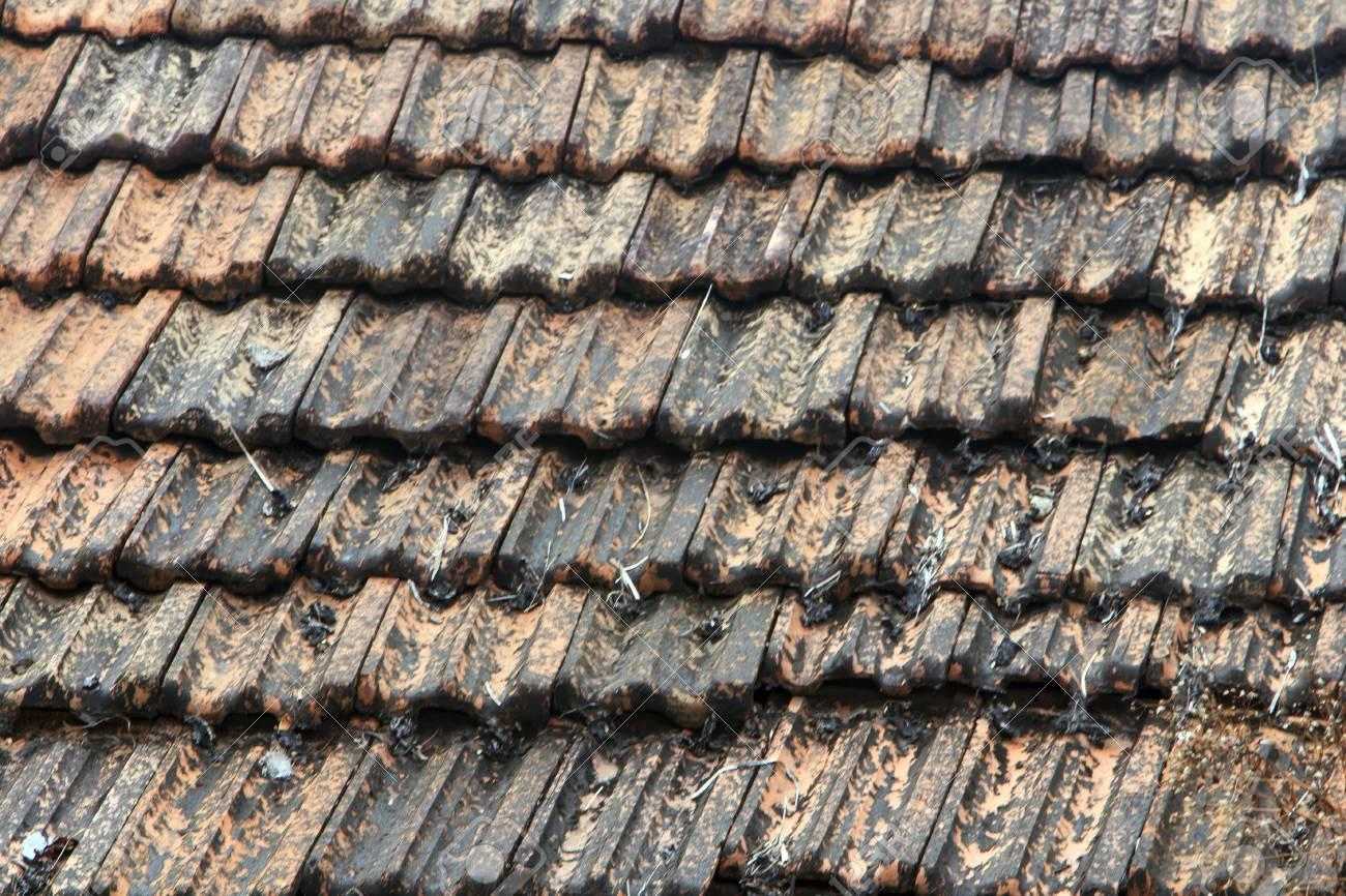 Il tetto è coperto da piastrelle marrone vicino foto royalty free