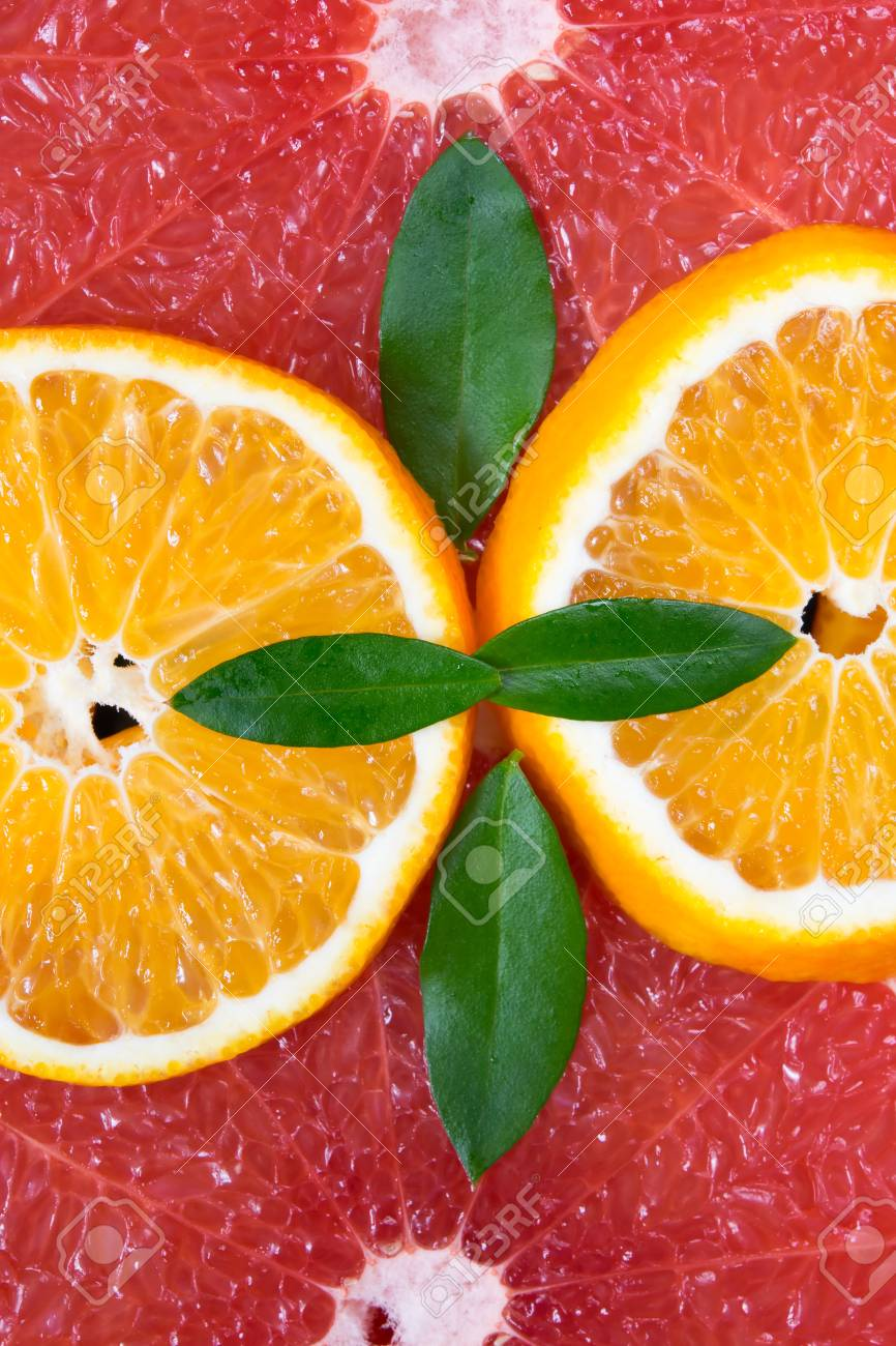 Citrus Fruit Structure Is Laid Out Beautifully Stock Photo Picture