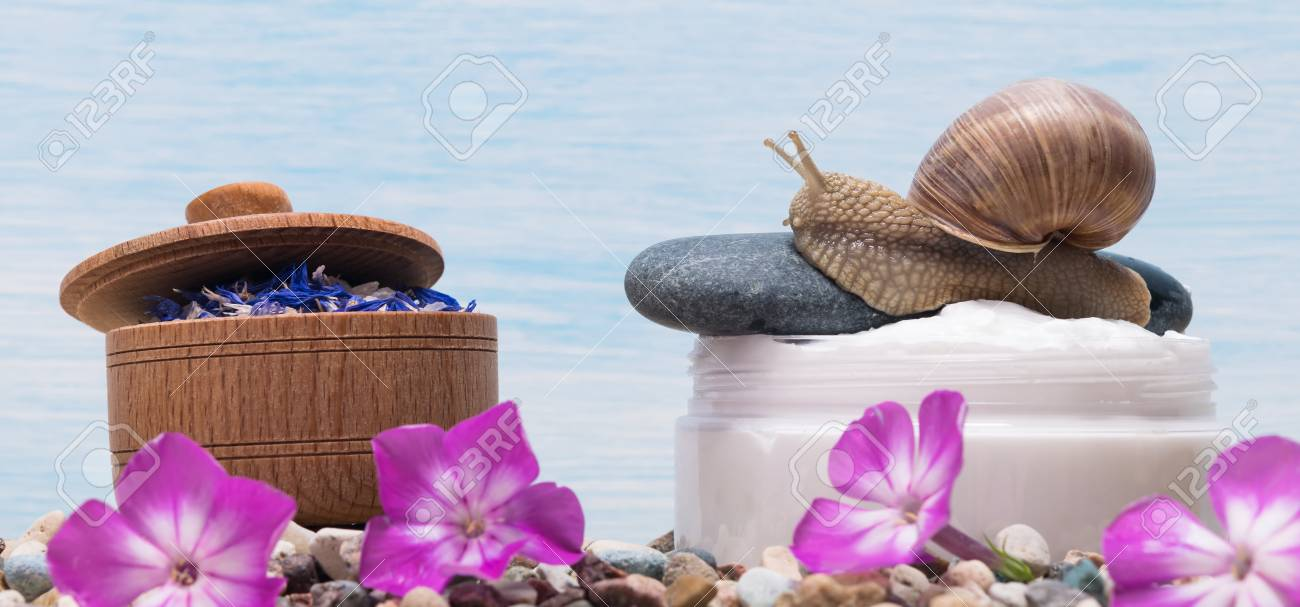 The Snail Slime Ingredient For Skin Cream Stock Photo, Picture And ...