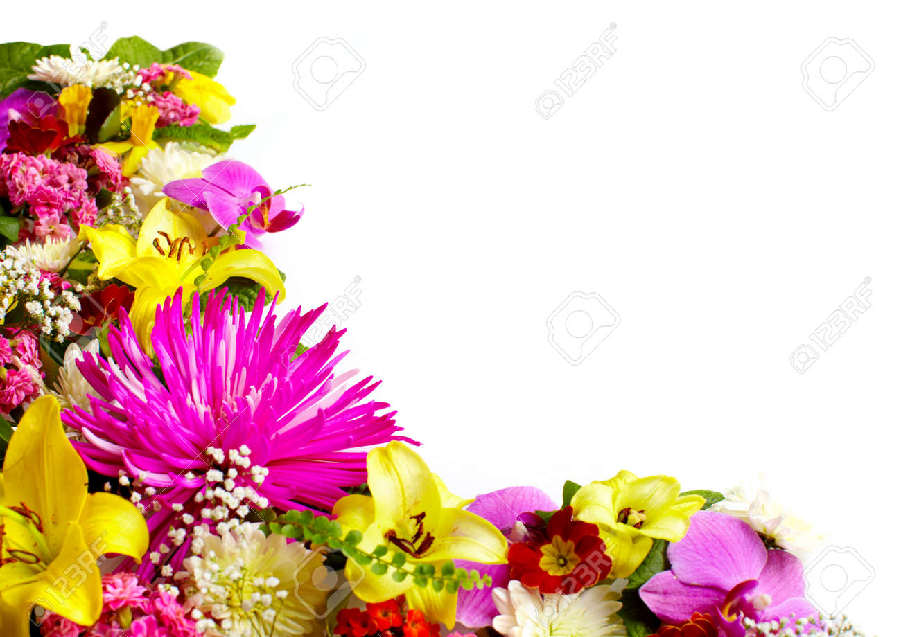 Floral greeting card with beautiful flowers stock photo picture and floral greeting card with beautiful flowers stock photo 18549894 izmirmasajfo