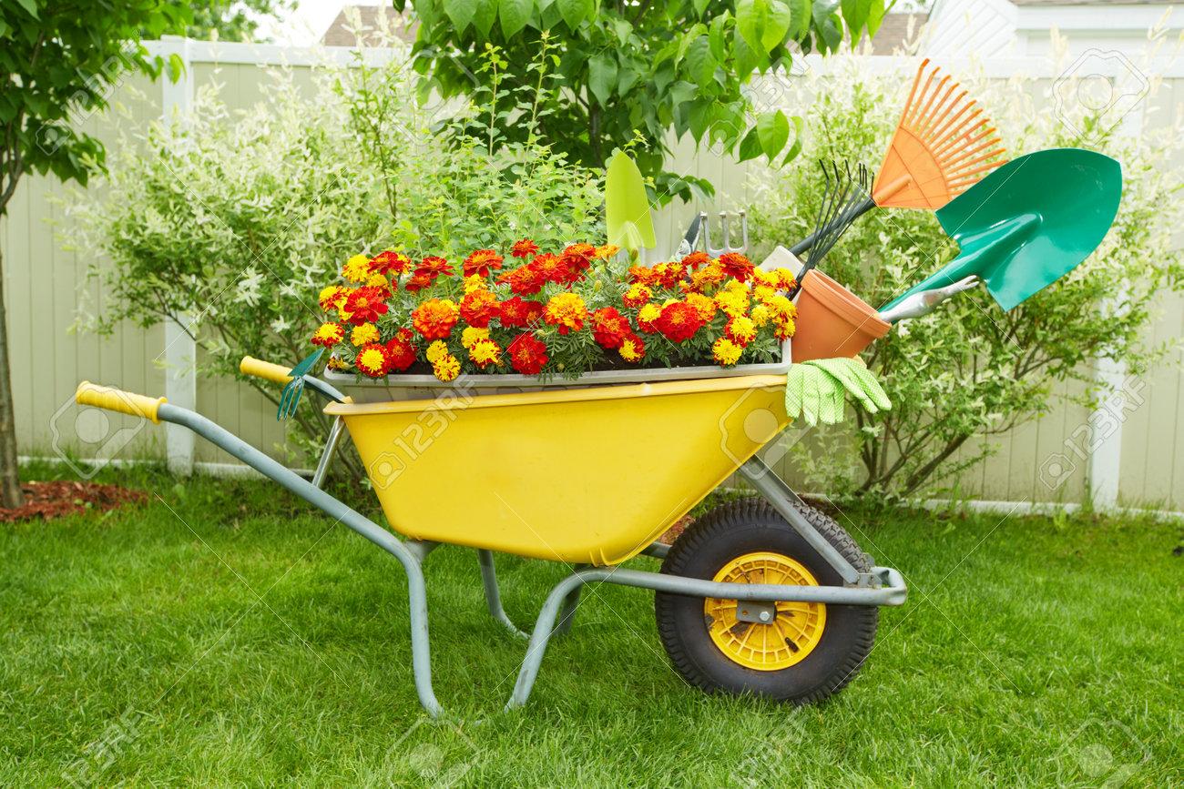 Fabelhaft Schubkarre Mit Gartengeräten Im Garten. Lizenzfreie Fotos, Bilder &RC_94