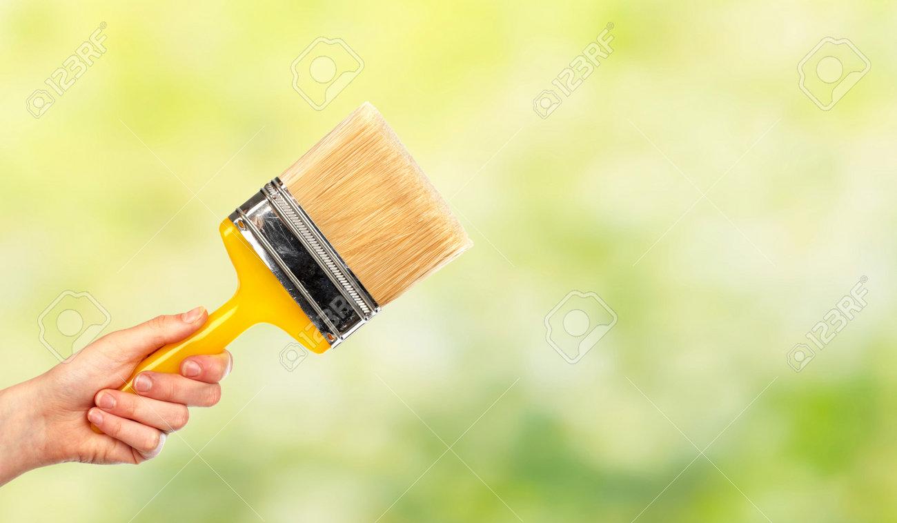 Hand Der Frau Mit Einer Bürste. Haus Renovierung Und Bau. Standard Bild