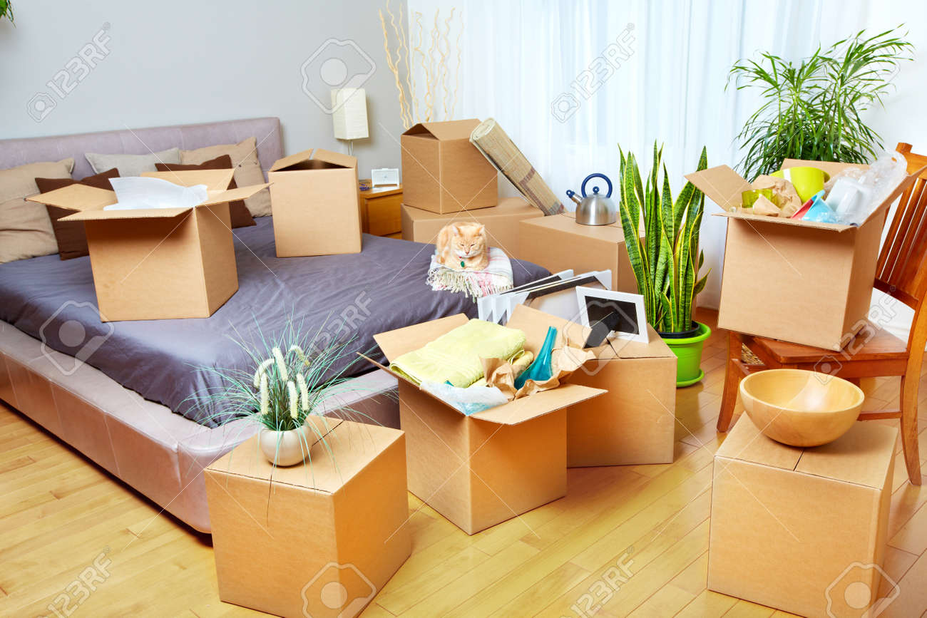 Moving boxes in new house. Real estate concept. Standard-Bild - 54200810