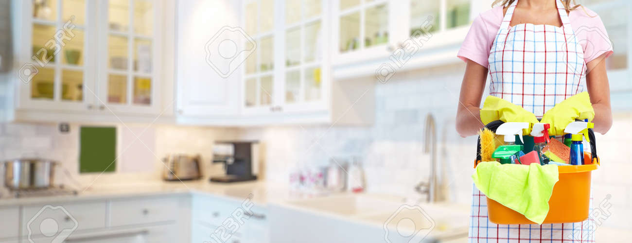 Young professional Housemaid woman. Cleaning service background. - 61329734
