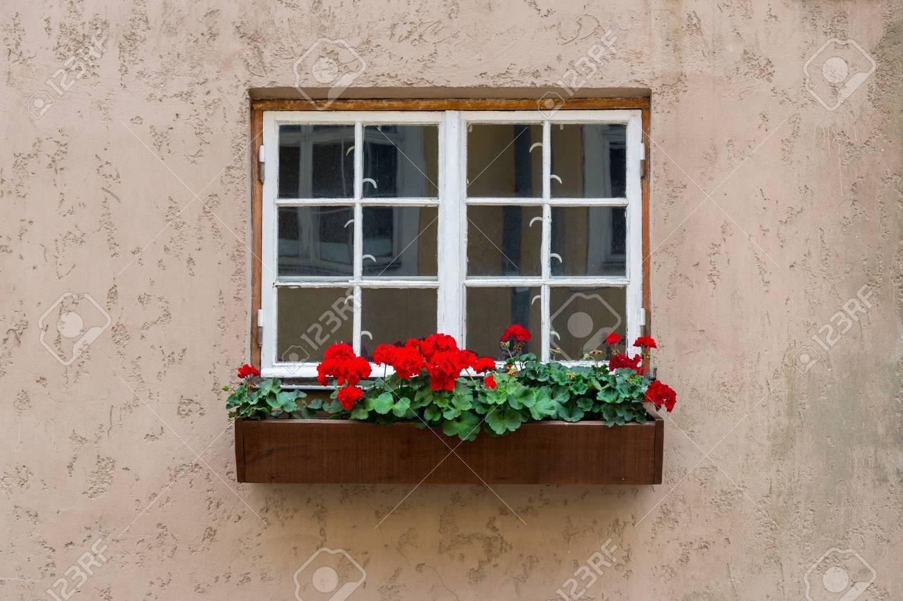 Altes Weißes Hölzernes Fenster Mit Blumenkasten Auf Dem Konkreten ...