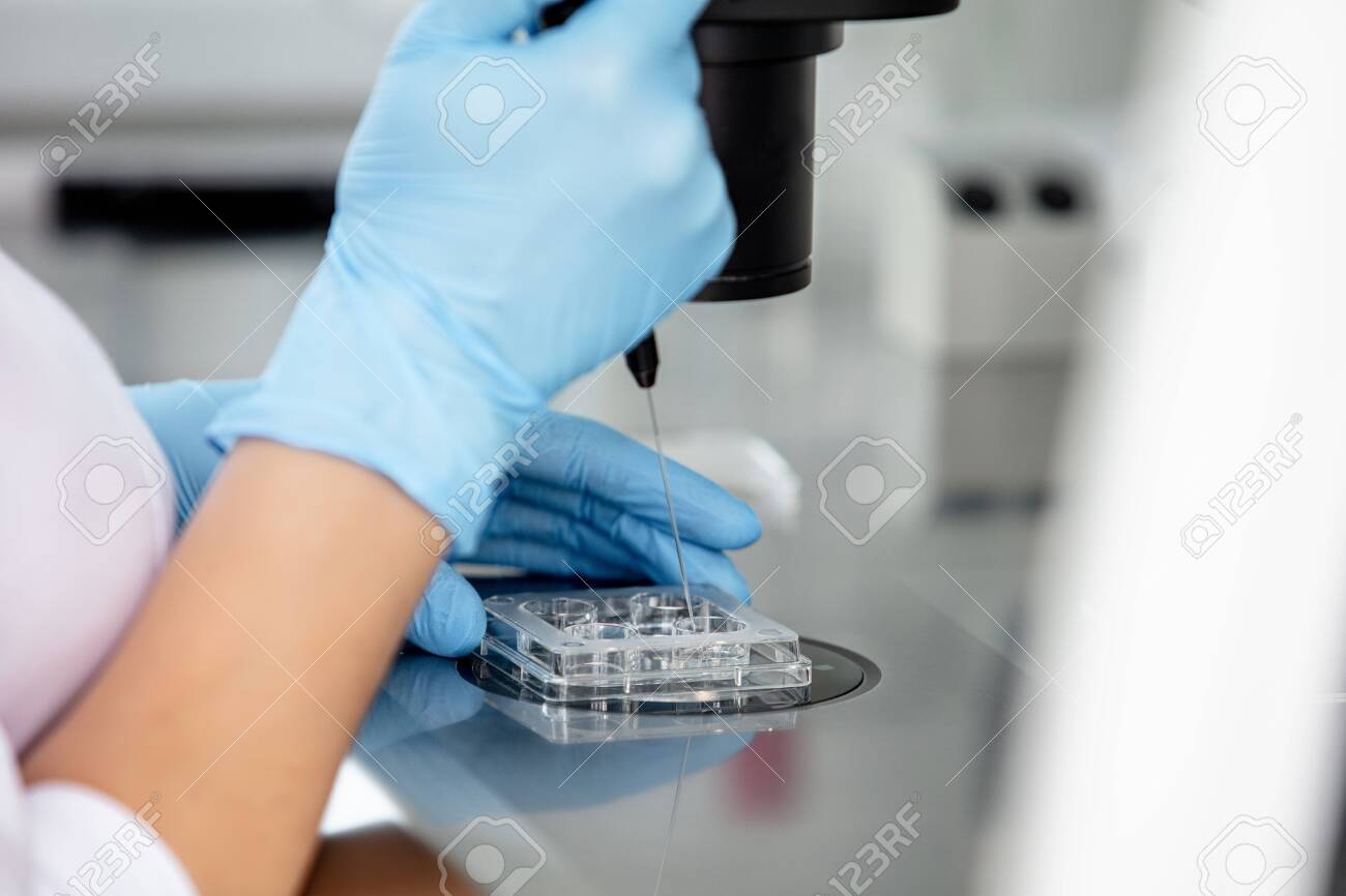 Hands of a doctor in gloves working in a laboratory with a microscope close up - 146950100