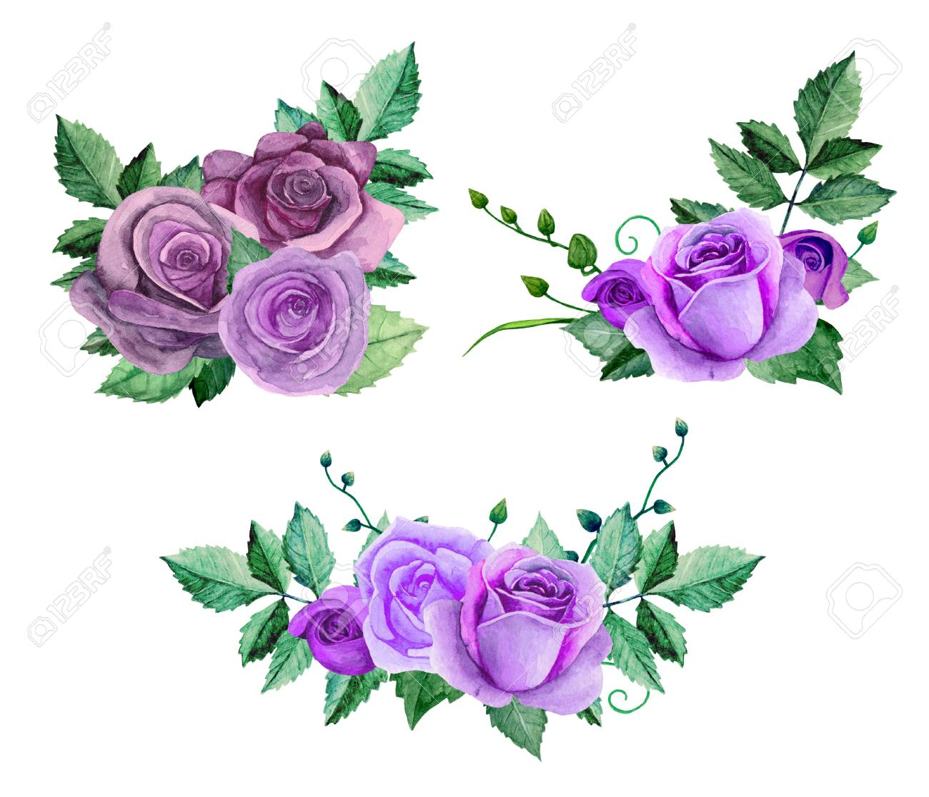 Watercolor Purple Roses Bouquets. Flowers Clip Art. Floral Hand ...