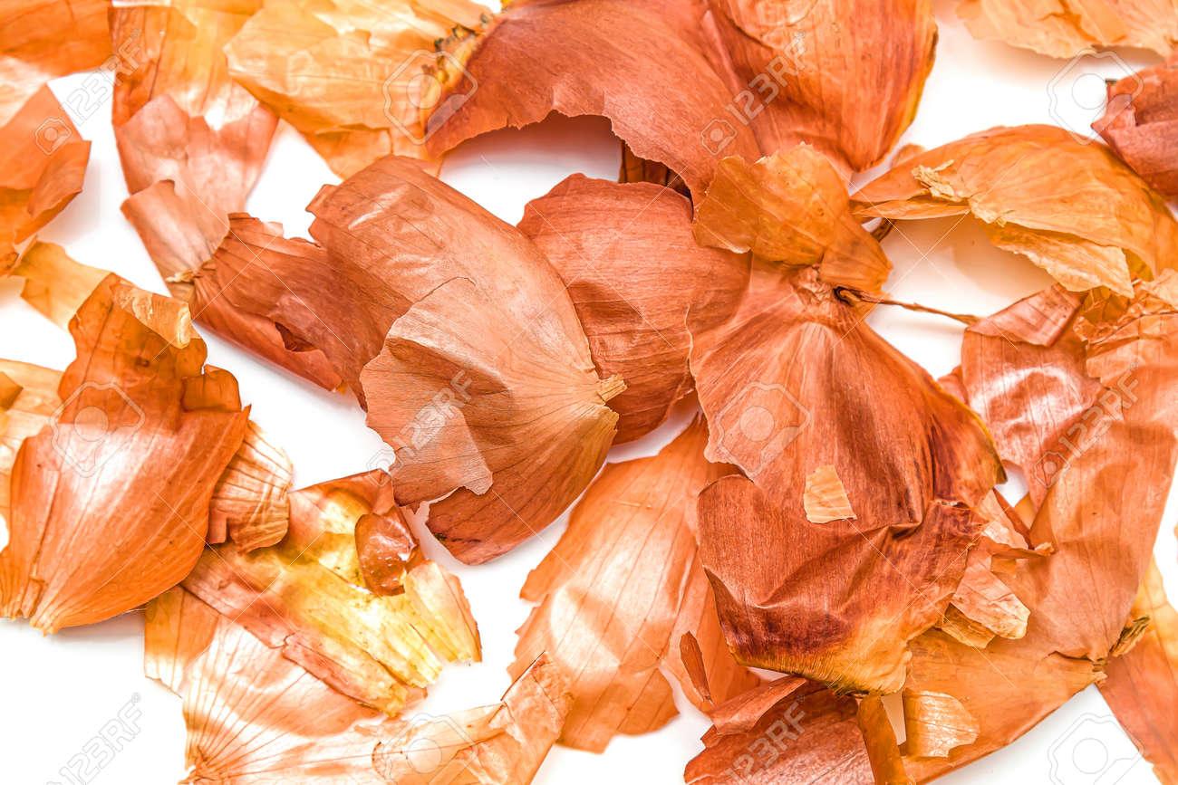 Onion husk close-up on a white background. - 155722719
