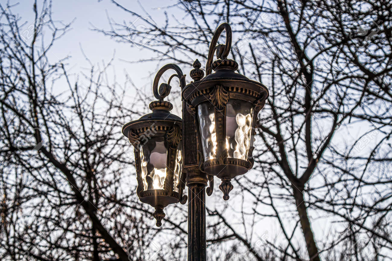 Street lighting lamps in a city park against the sky and trees. - 155722457