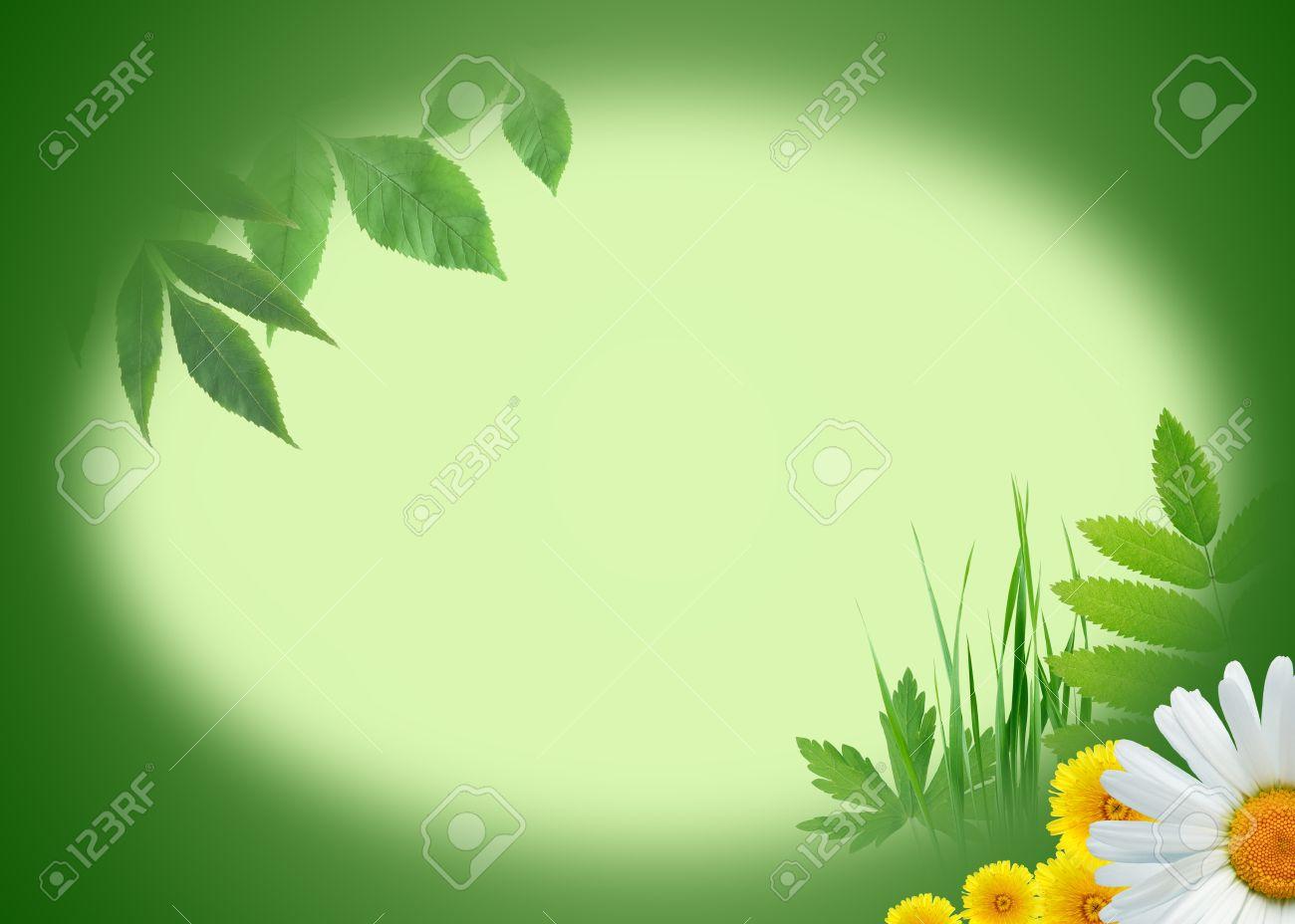 Immagini Stock Ecologia Concetto Natura Sfondo Verde Con Piante E