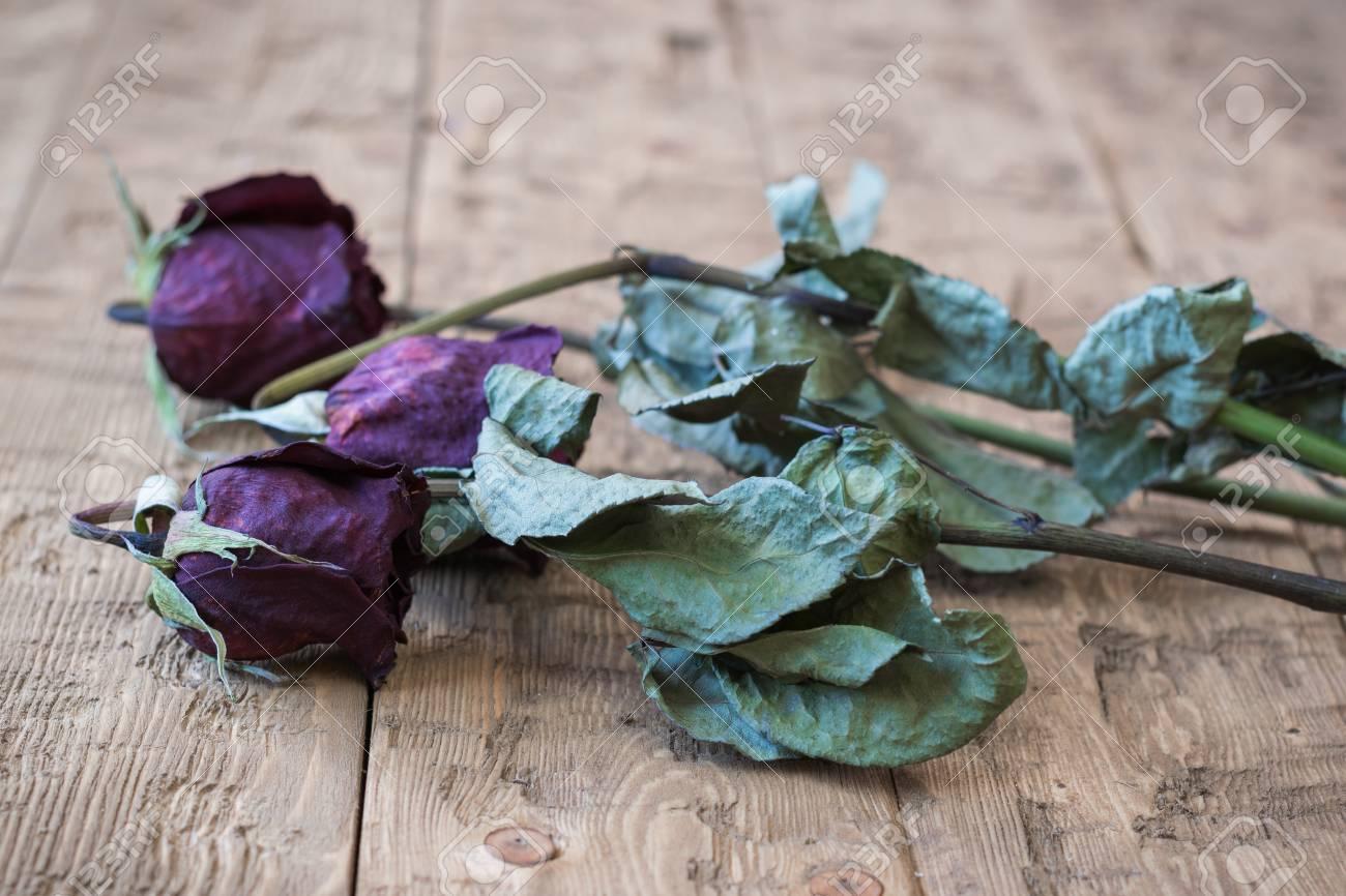 Schone Vintage Wilted Rosen Auf Einem Rustikalen Hintergrund