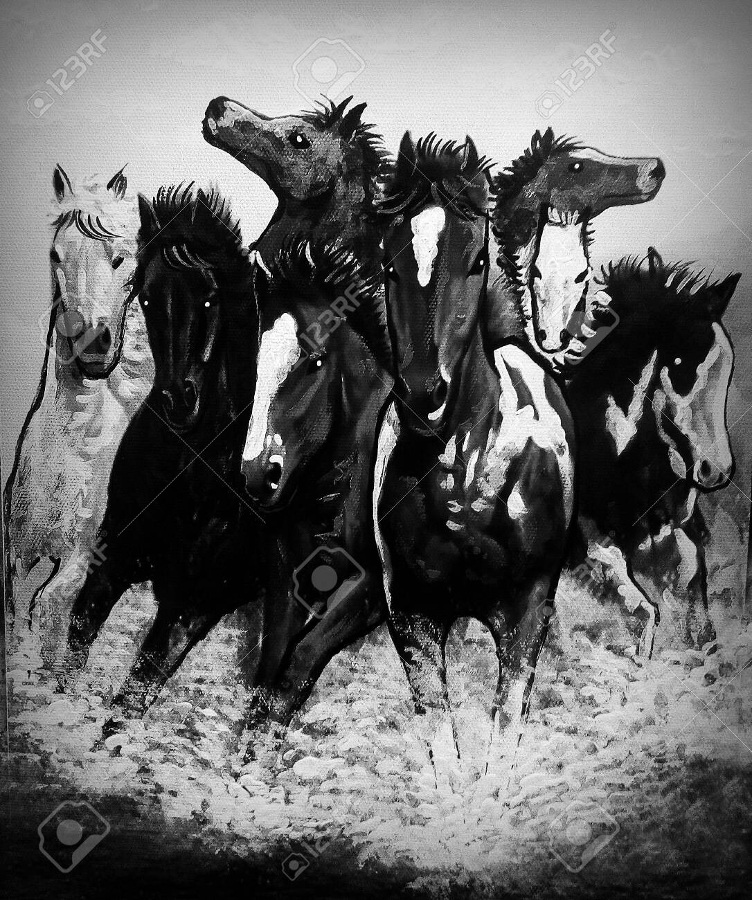 Art Painting Acrylic Color Running Horse Lucky Black And White Stock Photo Picture And Royalty Free Image Image 152272084