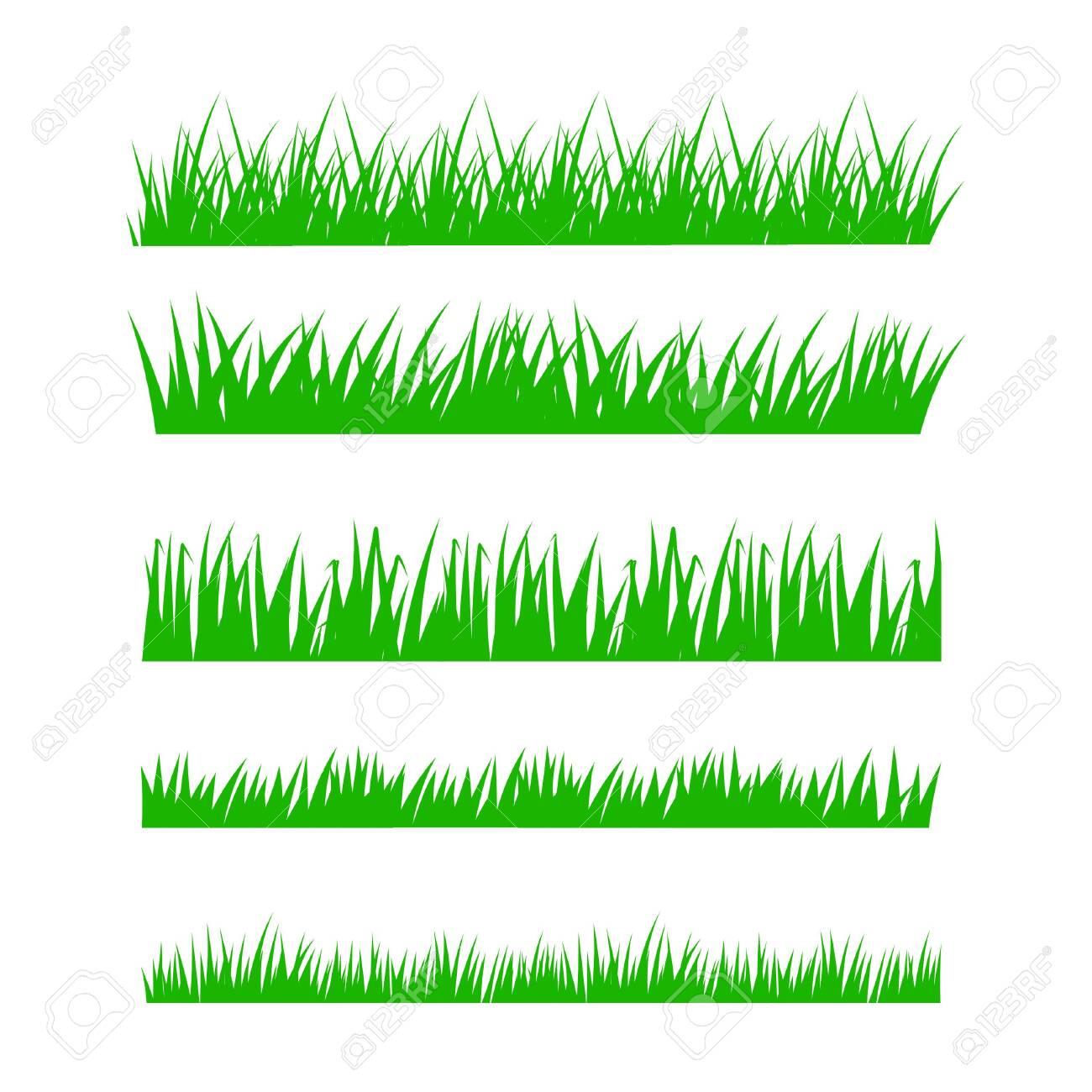 Set of green grass on white background. Vector illustration. - 138088226