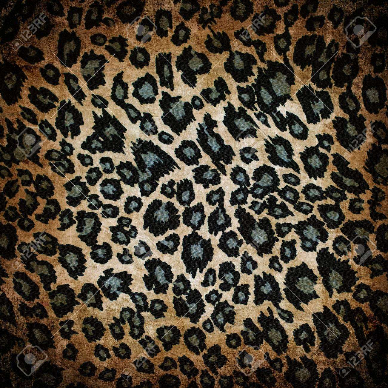 Wild animal skin pattern - leopard or cheetah Stock Photo - 22551061
