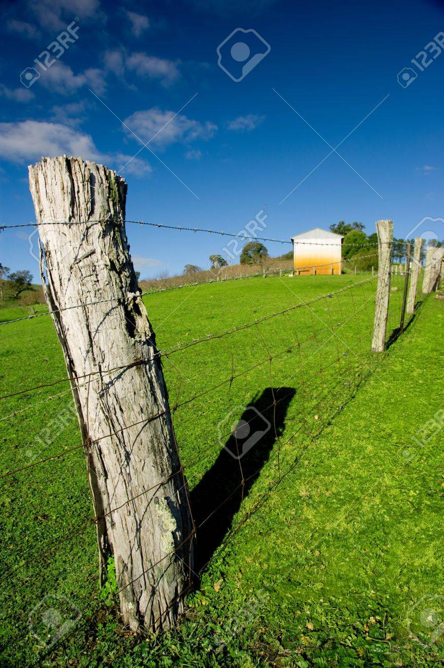 Fence Post in a rural field Stock Photo - 3421544