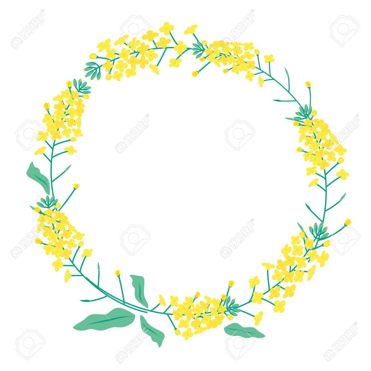 菜の花のフレーム イラストのイラスト素材ベクタ Image 73652471